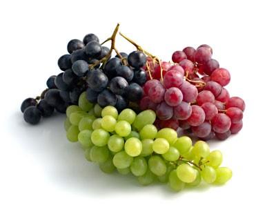 Weintrauben sind lecker und gesund