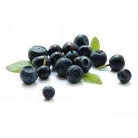 Natürliche Antioxidantien gegen freie Radikale