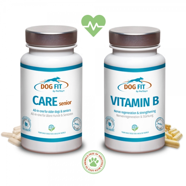 DOG FIT by PreThis® CARE senior und Vitamin B