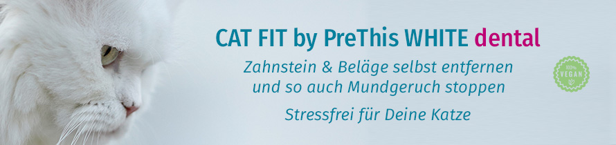 CAT FIT by PreThis WHITE dental entfernt Zahnstein