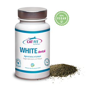 CAT FIT by PreThis WHITE dental